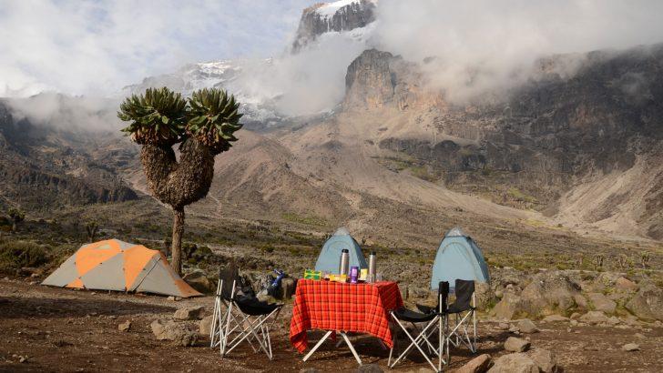 Veilig naar de top van Kilimanjaro