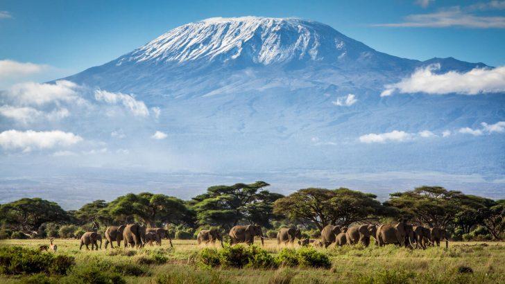 3 op reis BNN en Explore Tanzania