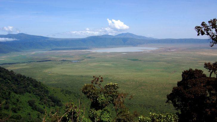 Mooie reis naar Tanzania