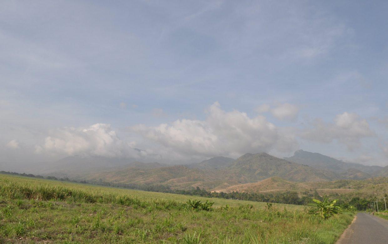 Savanne, bergen en strand
