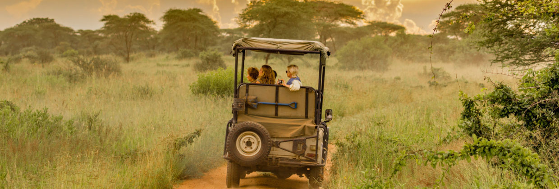 ruaha-national-park-safari