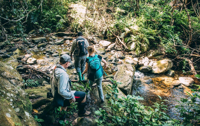 Explore Tanzania - Accommodatie Mahale Mountains - Greystoke