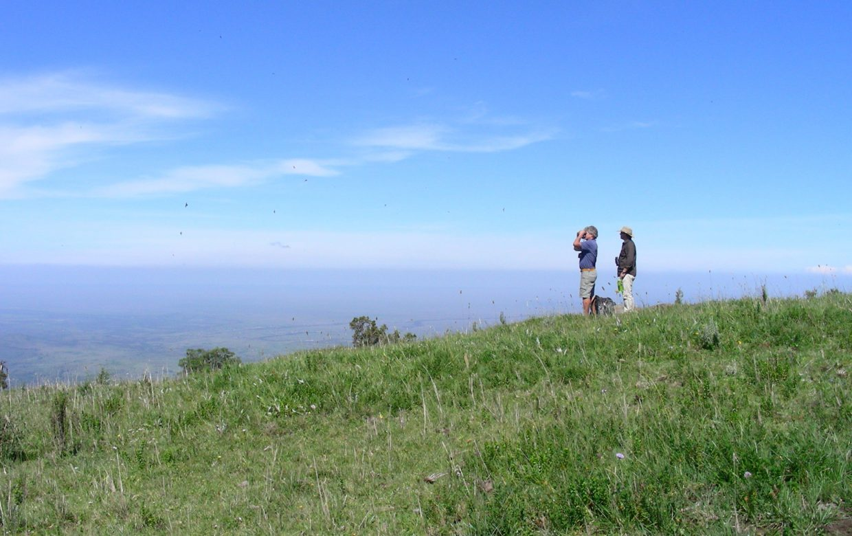 Explore Tanzania - Accommodatie Ngorongoro Krater - Mysigio Camp