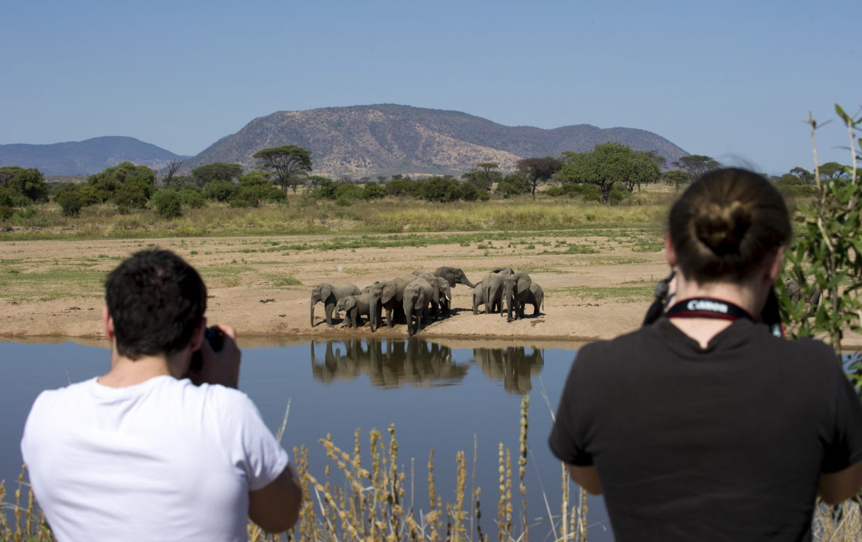 Explore Tanzania - Accommodatie Ruaha National Park - Kigelia