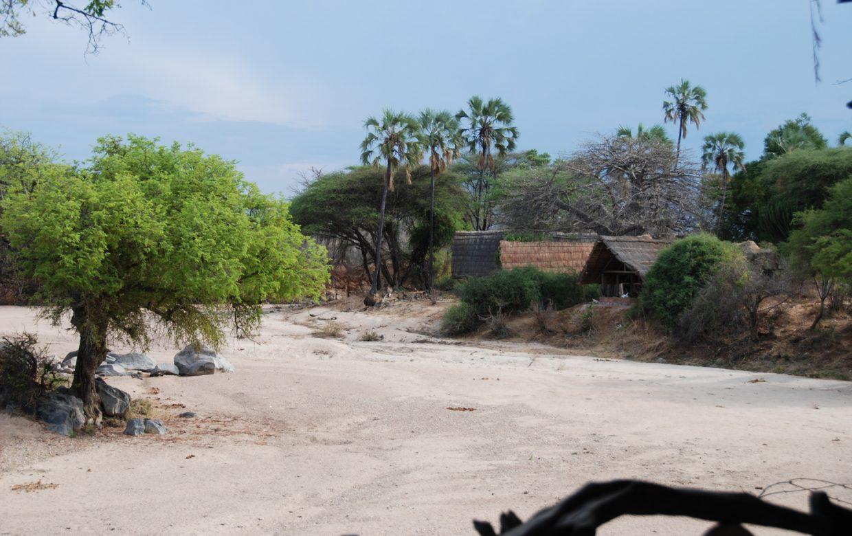 Explore Tanzania - Accommodatie Ruaha National Park - Mwagusi