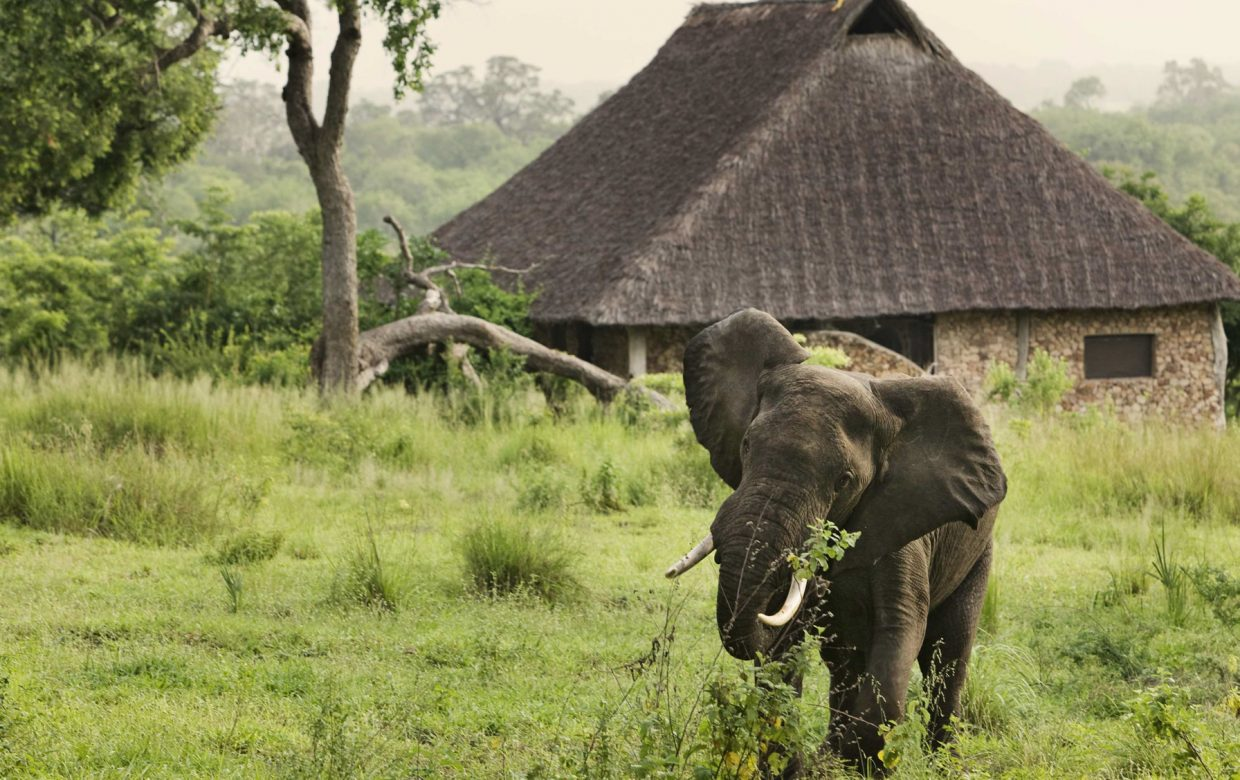 Explore Tanzania - Accommodatie Selous Game Reserve - Beho Beho