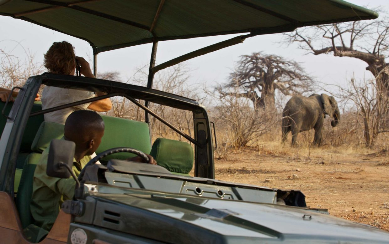 Explore Tanzania - Accommodatie Ruaha National Park - Ruaha River Lodge