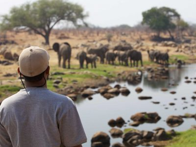 Explore Tanzania - Accommodatie Ruaha National Park - Ruaha River Lodge