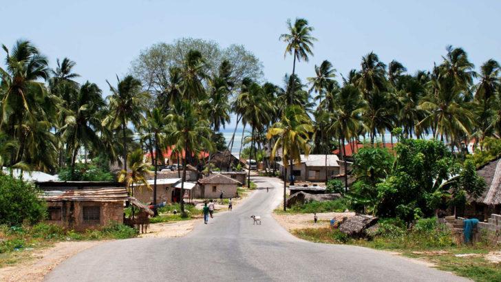 Op zoek naar de beste Tanzania ervaring