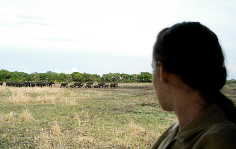 Accommodatie - Katavi National Park - Mbali Mbali Katavi