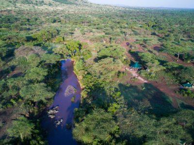 Green camp banagi serengeti