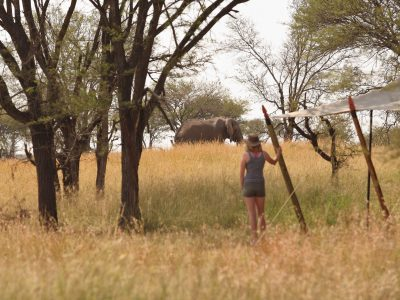 Explore Tanzania - Accommodatie Selous Game Reserve - SiwanduExplore Tanzania - Accommodatie Serengeti - Kimondo Camp