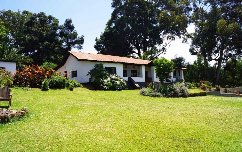 Accommodatie West Kilimanjaro - Simba Farm
