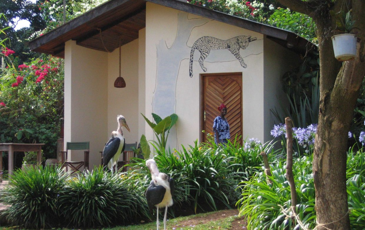 Accommodatie West Kilimanjaro - Makoa Farm