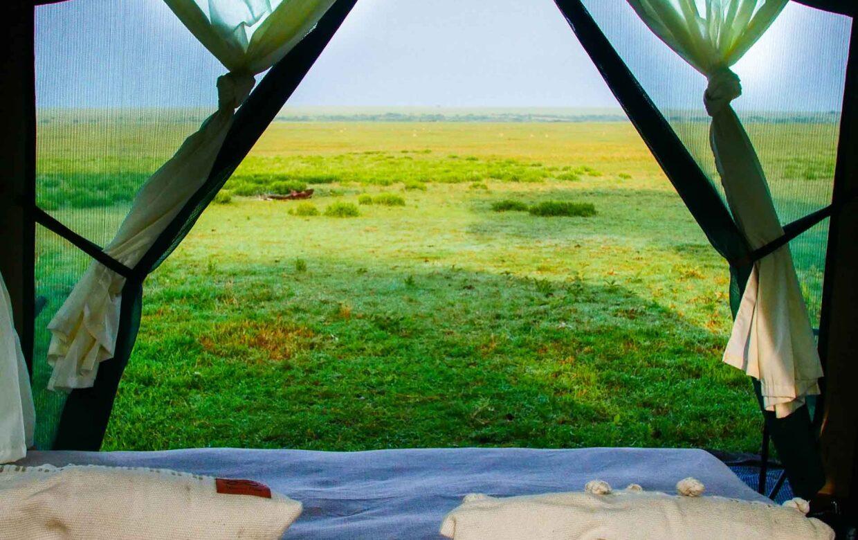 Green Camp Wandel