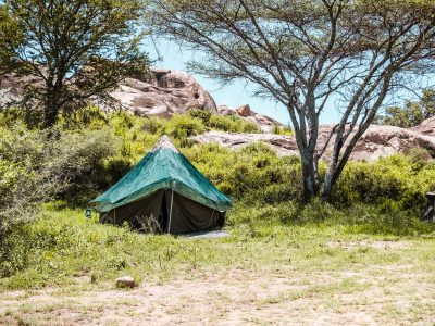 Green Camp - wandelen in Serengeti