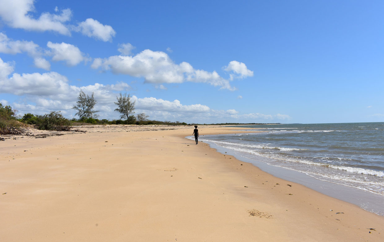 Accommodatie Saadani National Park - Kiijongo Bay Resort