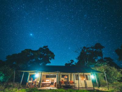 Accommodatie Serengeti - Lemala Mara and Ndutu Tented Camp