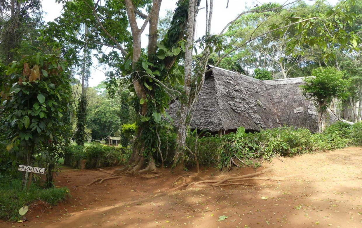 Usambara Mountains Explore Tanzania - Amani Forest Camp
