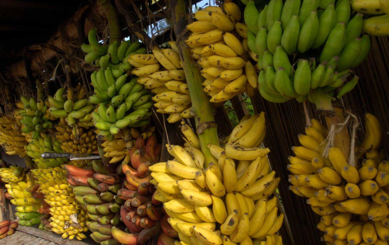 Smakelijk Zanzibar
