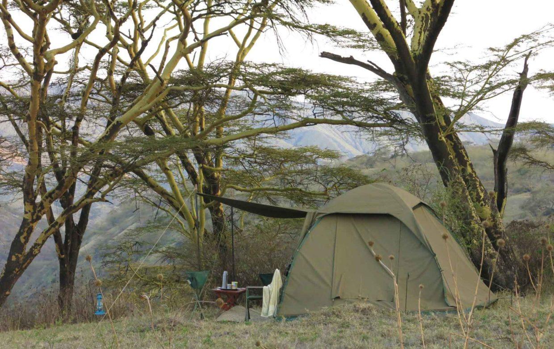 Selfdrive kamperen