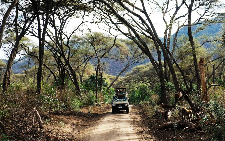 Student reis Tanzania safari Lake Manyara