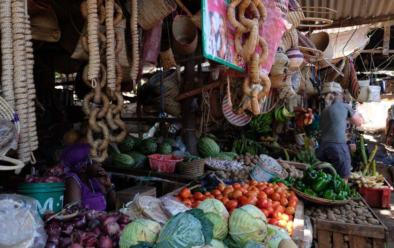 Student reis Tanzania markt Arusha