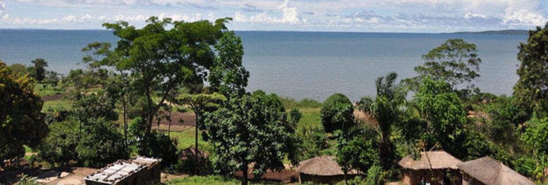 Mwanza stad