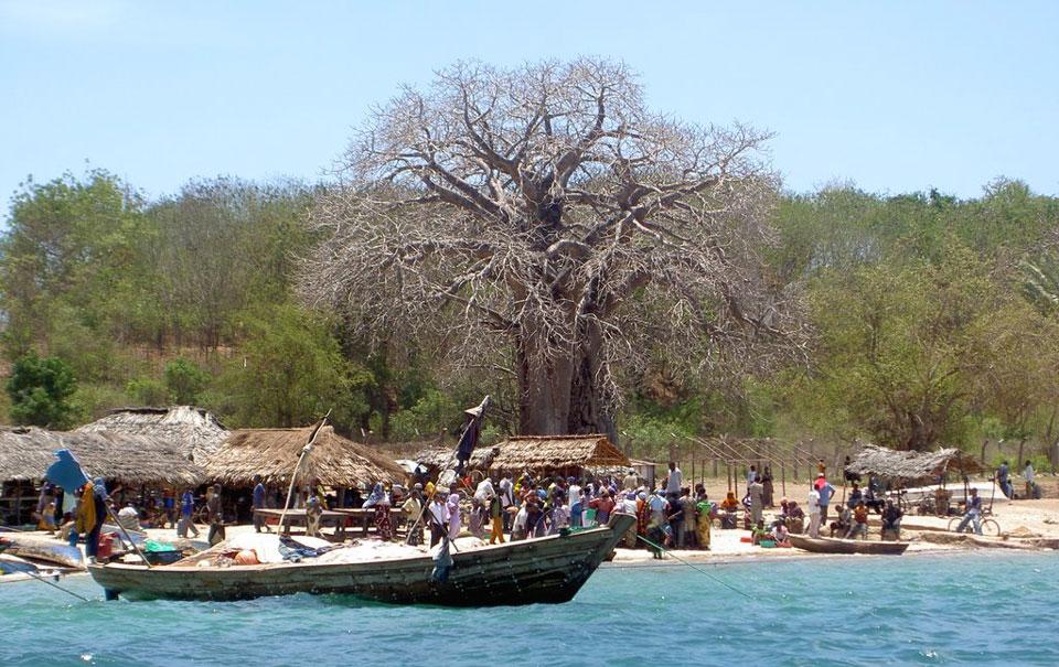 Swahili Zuidoostkust